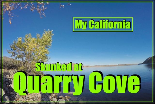 Quarry cove cover.png