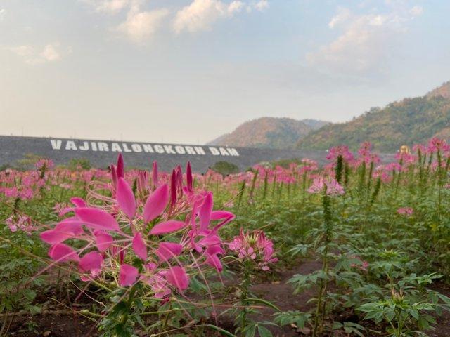 Vajiralongkorn Dam5.jpg
