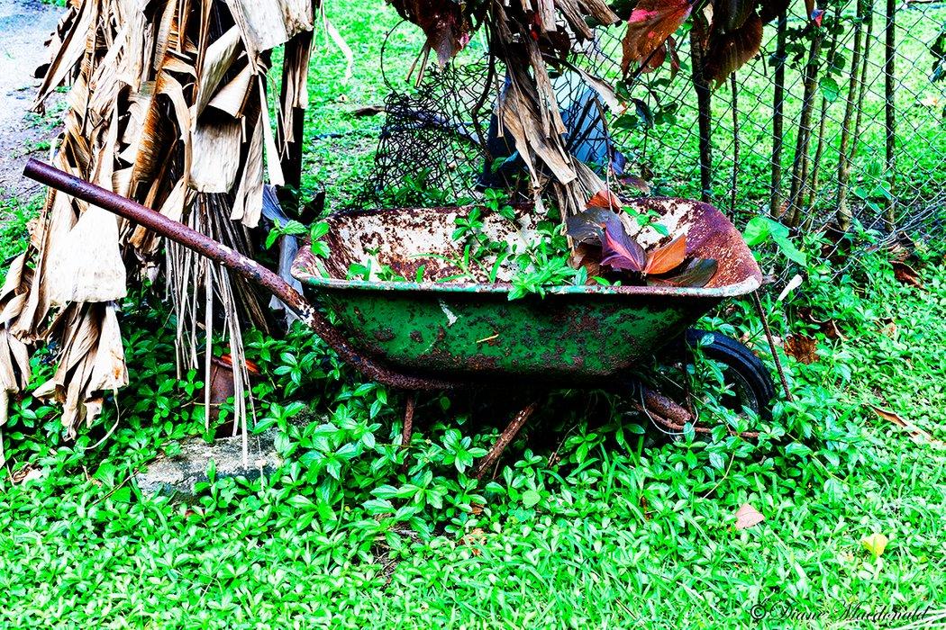 wheelbarrow huahine.jpg
