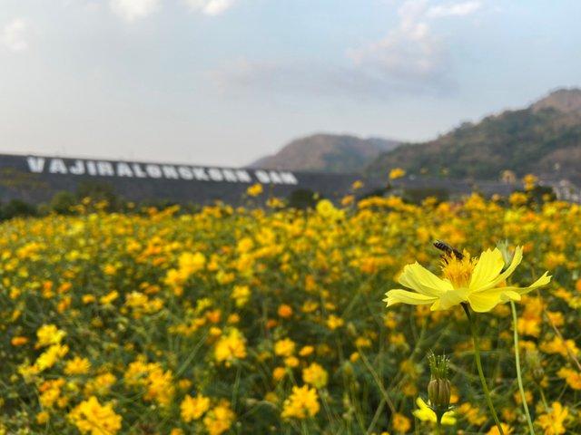 Vajiralongkorn Dam2.jpg