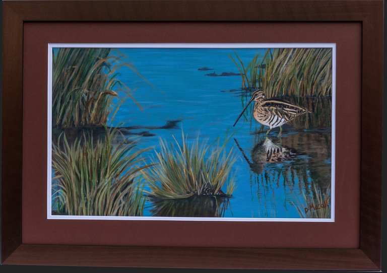 Snipe at Frampton Marsh_ Grey Framed.jpg