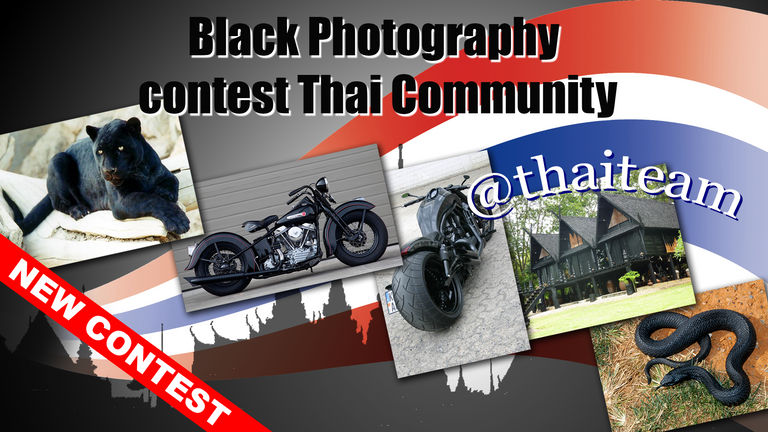 black_photography_contest.png