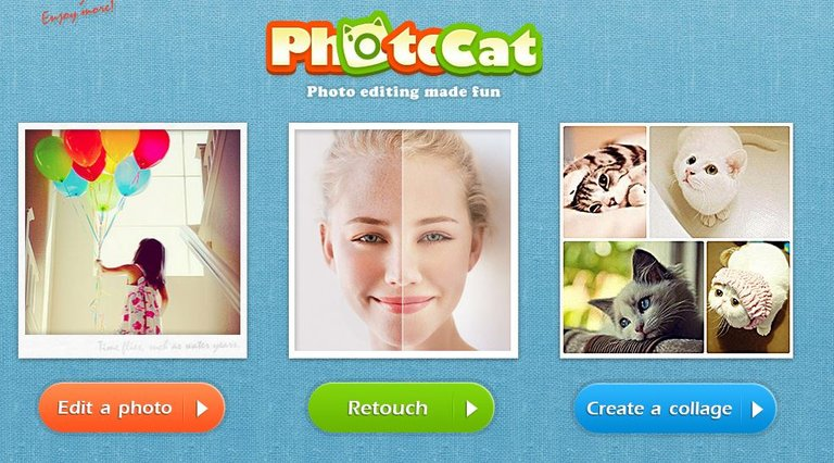 photocat photo editing.JPG