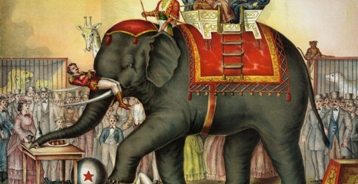 """""""Elephant Spirit Crushing"""": Why You Shouldn't Ride an Elephant and Elephant Nature Park's Solution in Thailand"""