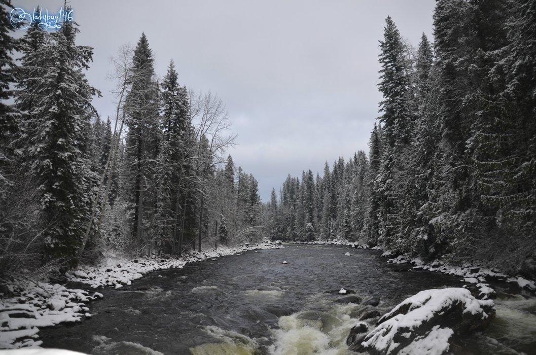 wells gray provincial park.jpg
