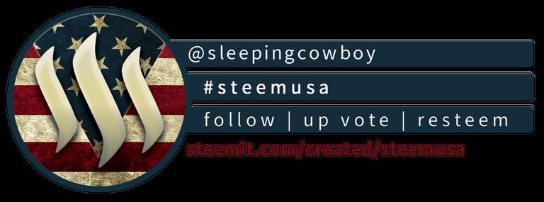 Steem USA Compact Banner