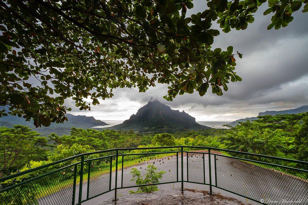 Mount Rotui From Belvedere.jpg