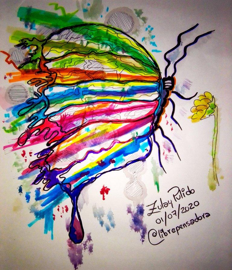181_Hand_Drawing_Mariposa_02072020_Destacado.jpg