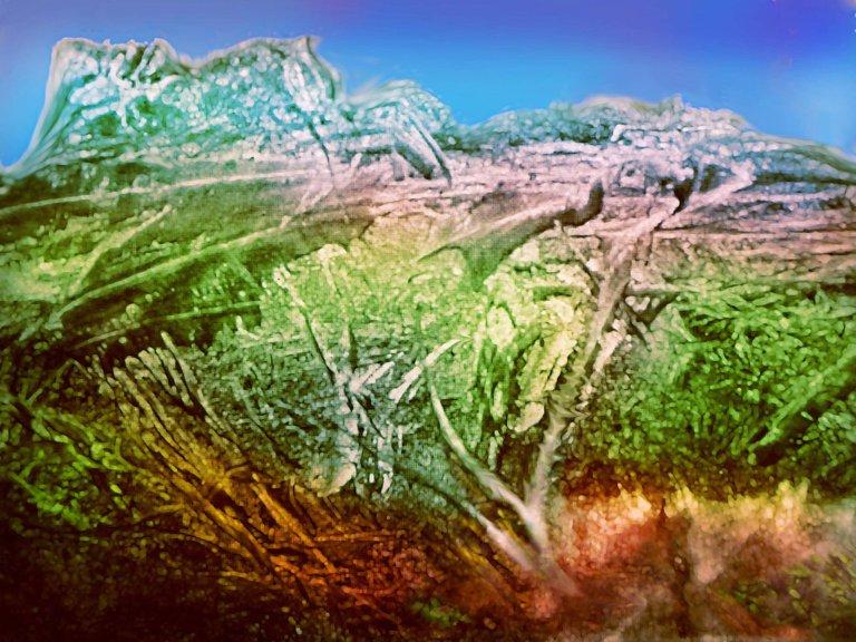 DSCN8891  photoshop play  paint2WEB2000.jpg