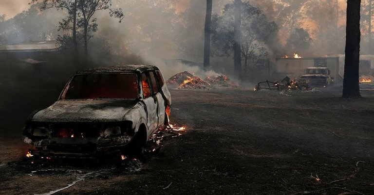 Wildfires in New South Wales Australia .jpg