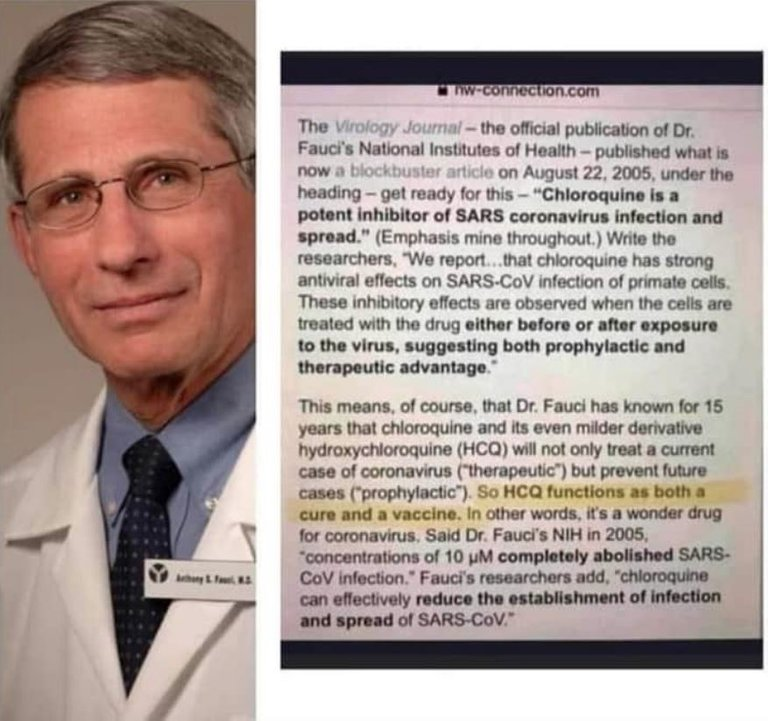 fauci, chloroquine - he knows.jpg