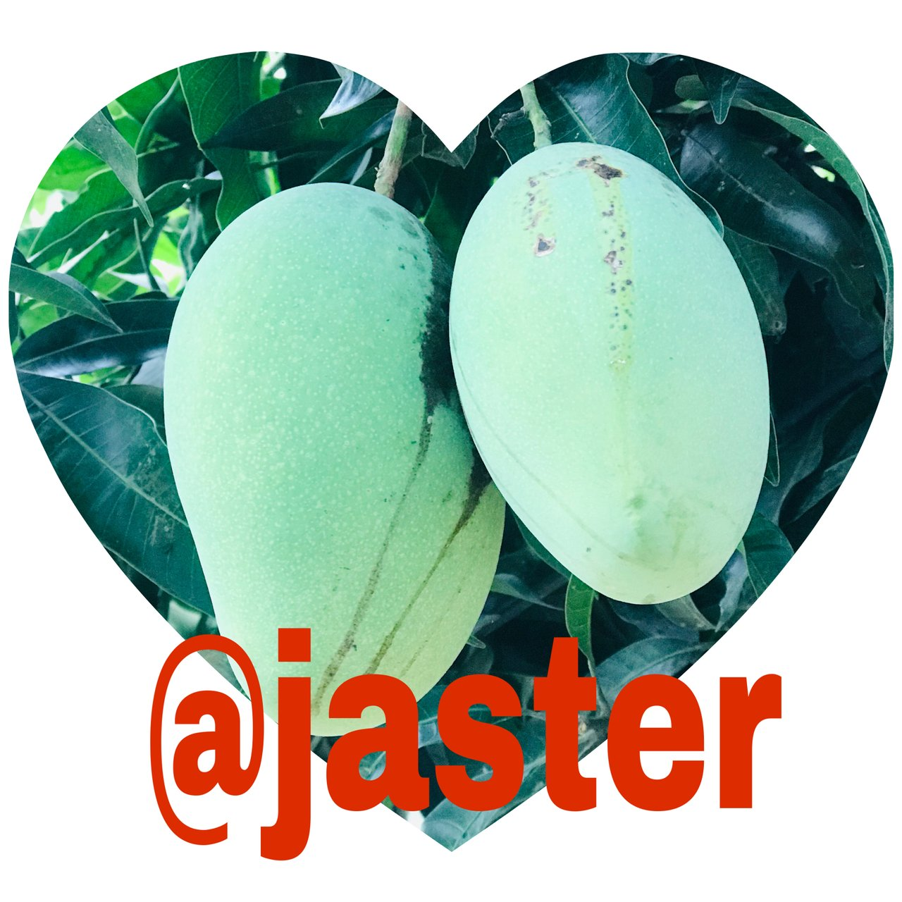 @jaster