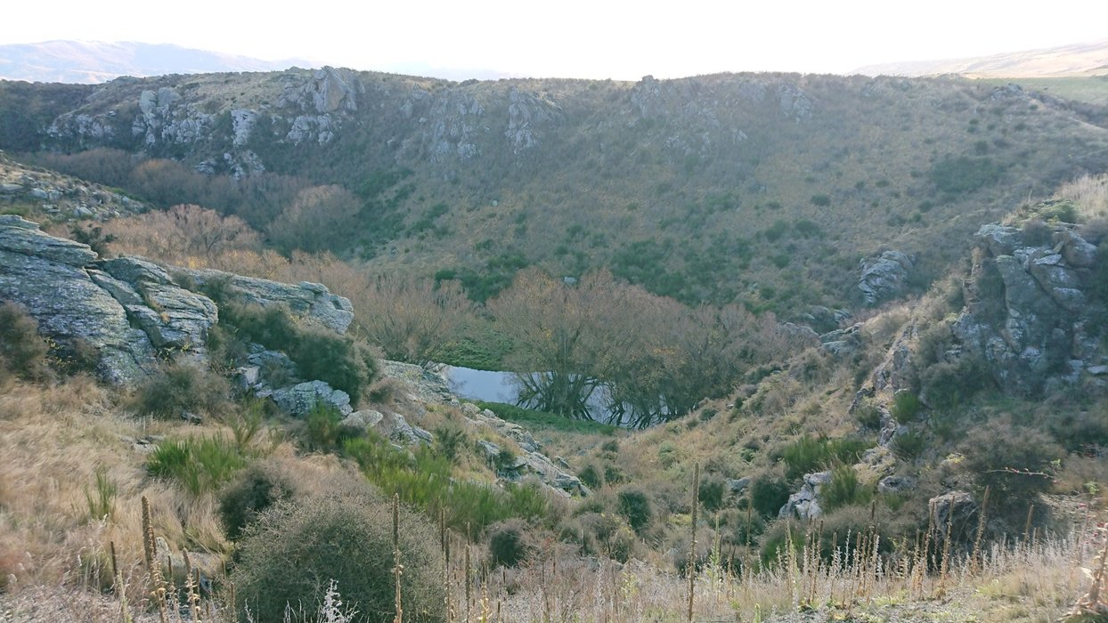 ...with shrubbery and schist rock being prominent features here.