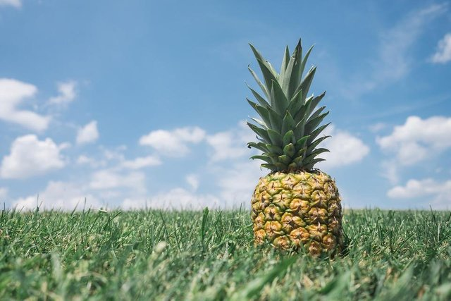 pineapple-867245_1280.jpg