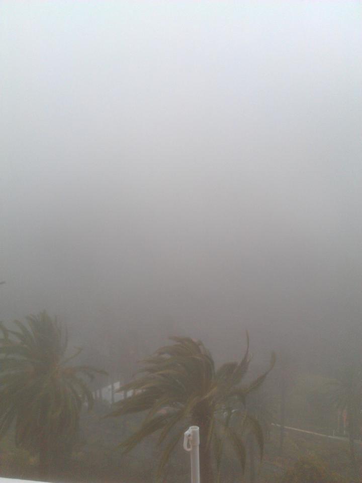 regen 9.jpg