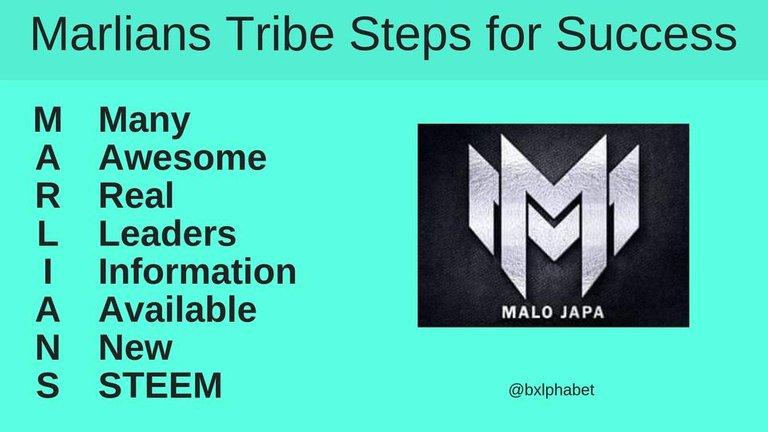 Marlians Tribe Steps for Success bxlphabet.jpg