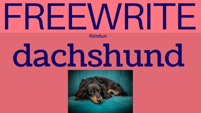 freewrite dachshund fitinfun.jpg