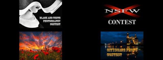 Contest collage.jpg