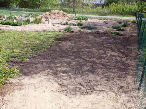 Big garden  20' strip getting wider crop May 2020.jpg