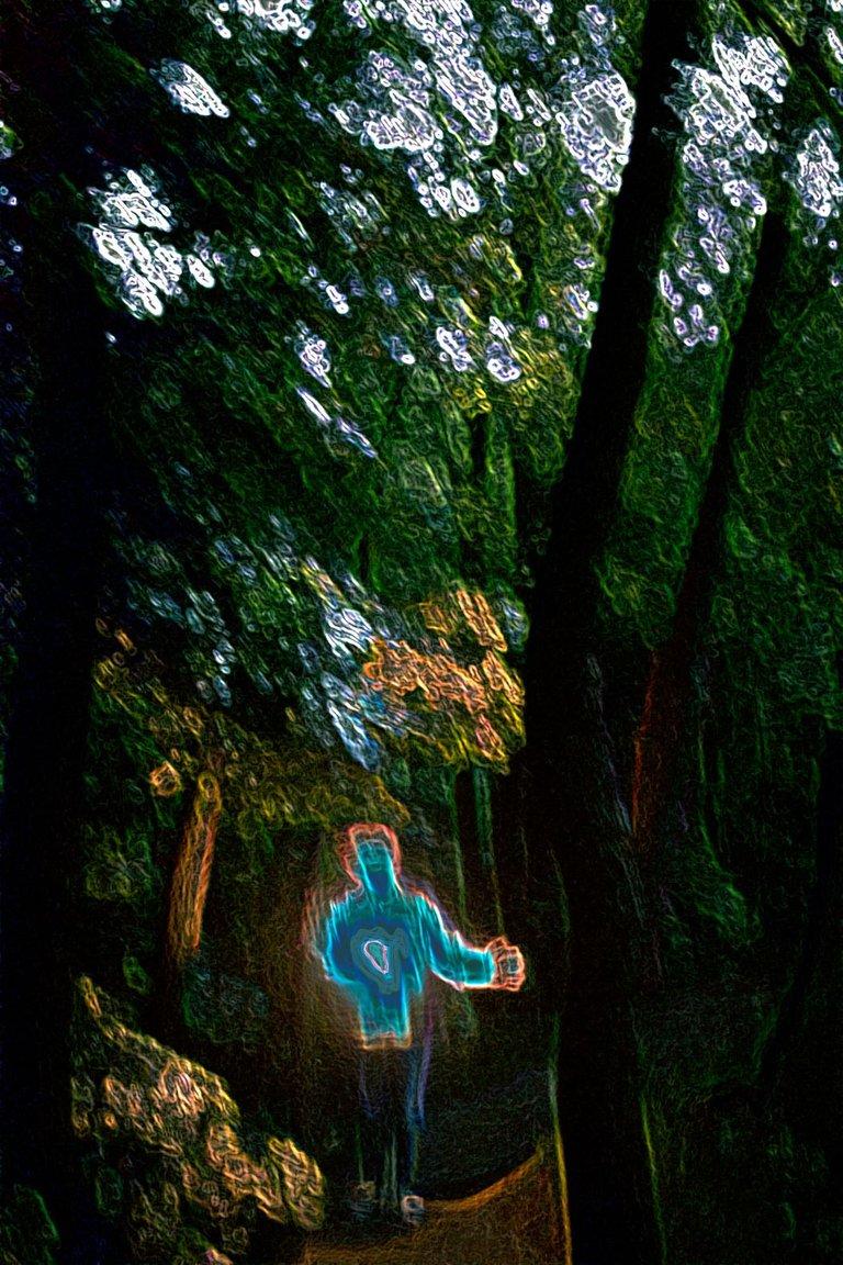 Forest-wizard.jpg