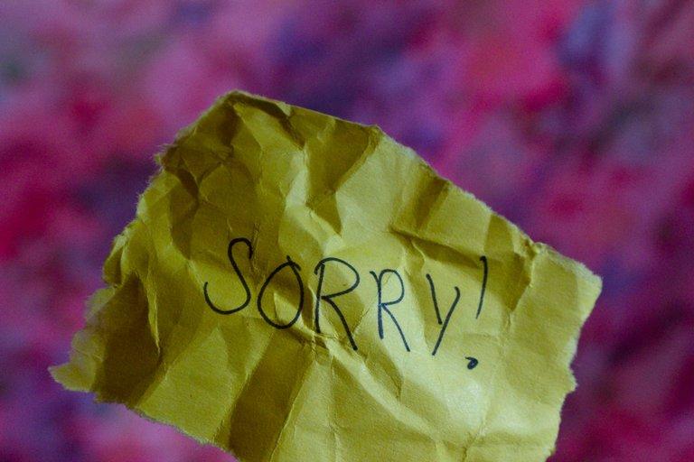 sorryy_IMG_9763.jpg