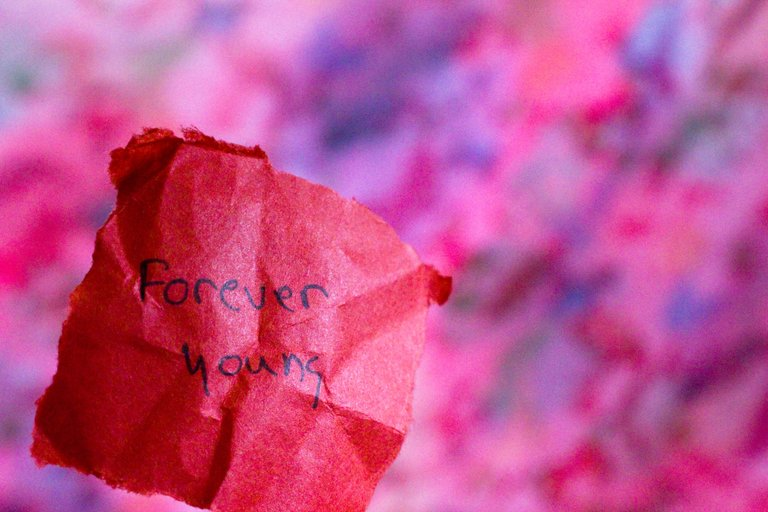 foreveryoung_IMG_9773.jpg