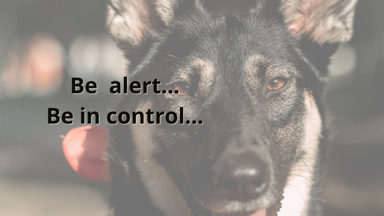 Be alert... Be in control....png
