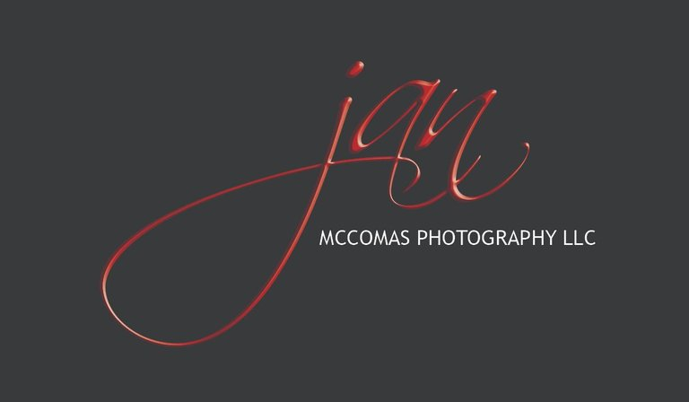 Jan McComas Logo.jpg