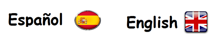 español-ingles.png