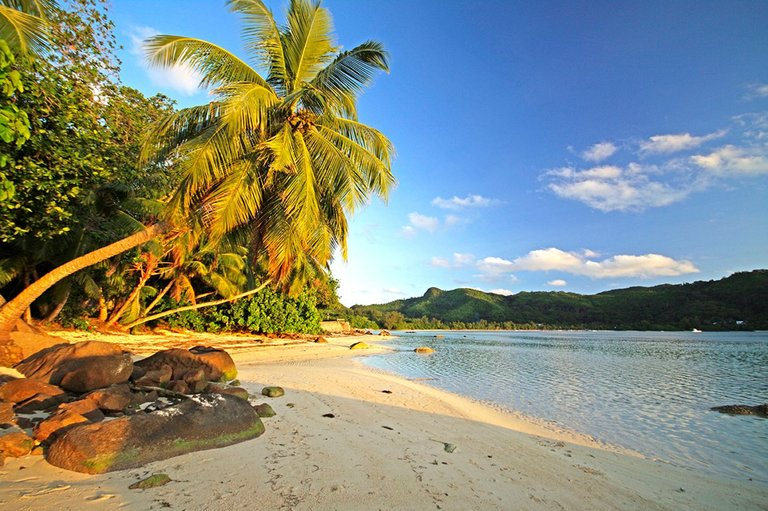 mahe-seychellen-blickwinkel-dpa-picture-alliance-jpg--70594-.jpg