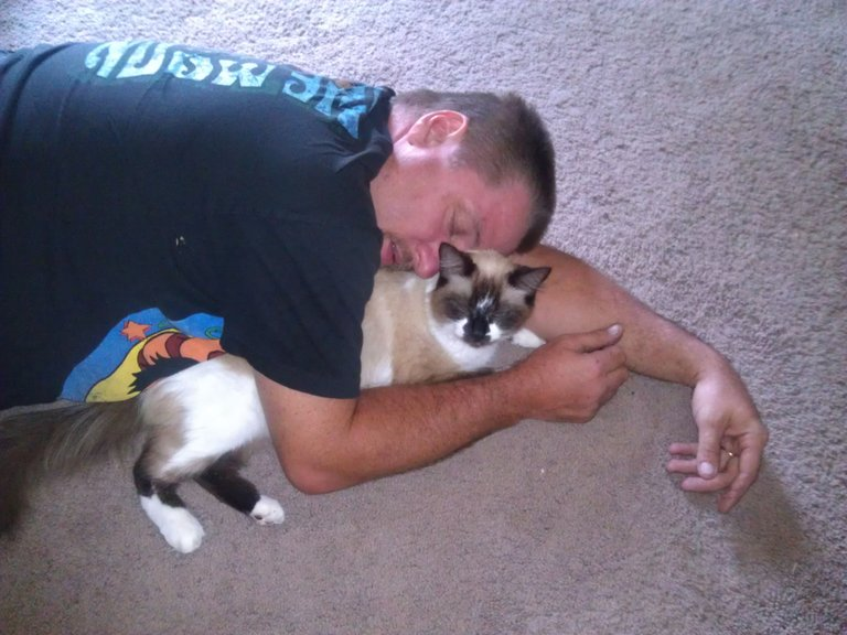 Cuddle Kitty (10).jpg