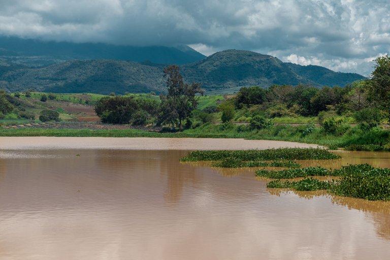 Laguna-3.jpg