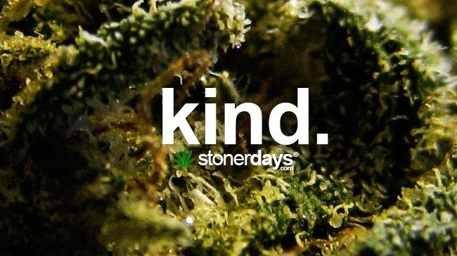 kind-marijuana-term-1.jpg