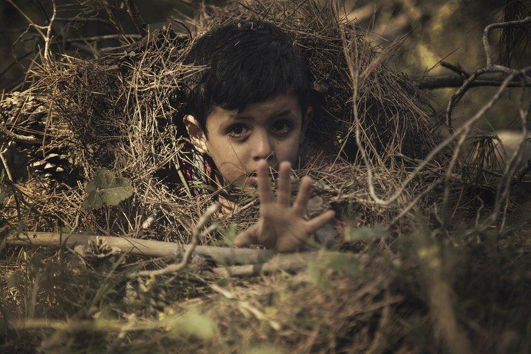 child1307653_1280.jpg