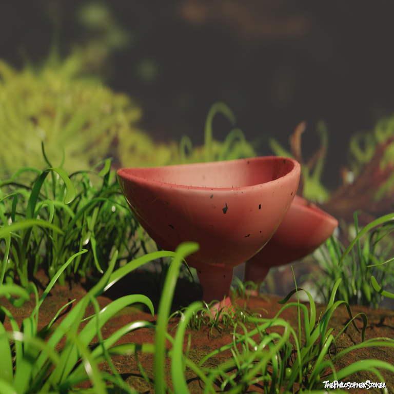 cupshroom compo 3.png