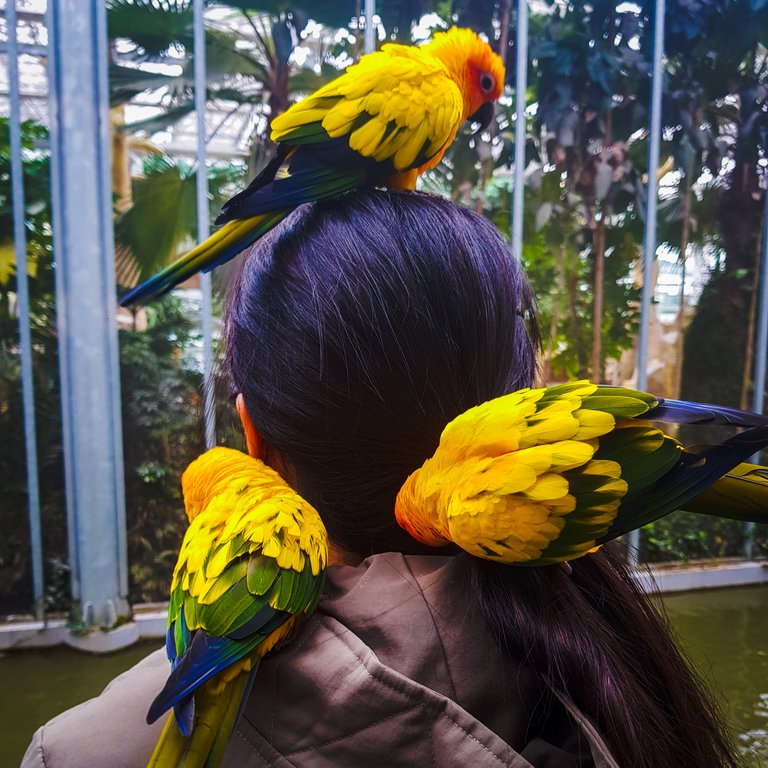 BirdPark 22.jpg