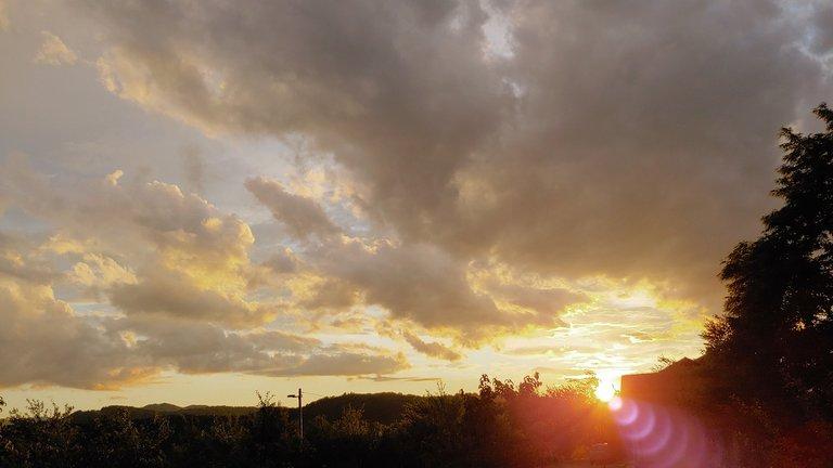 suns16.jpg