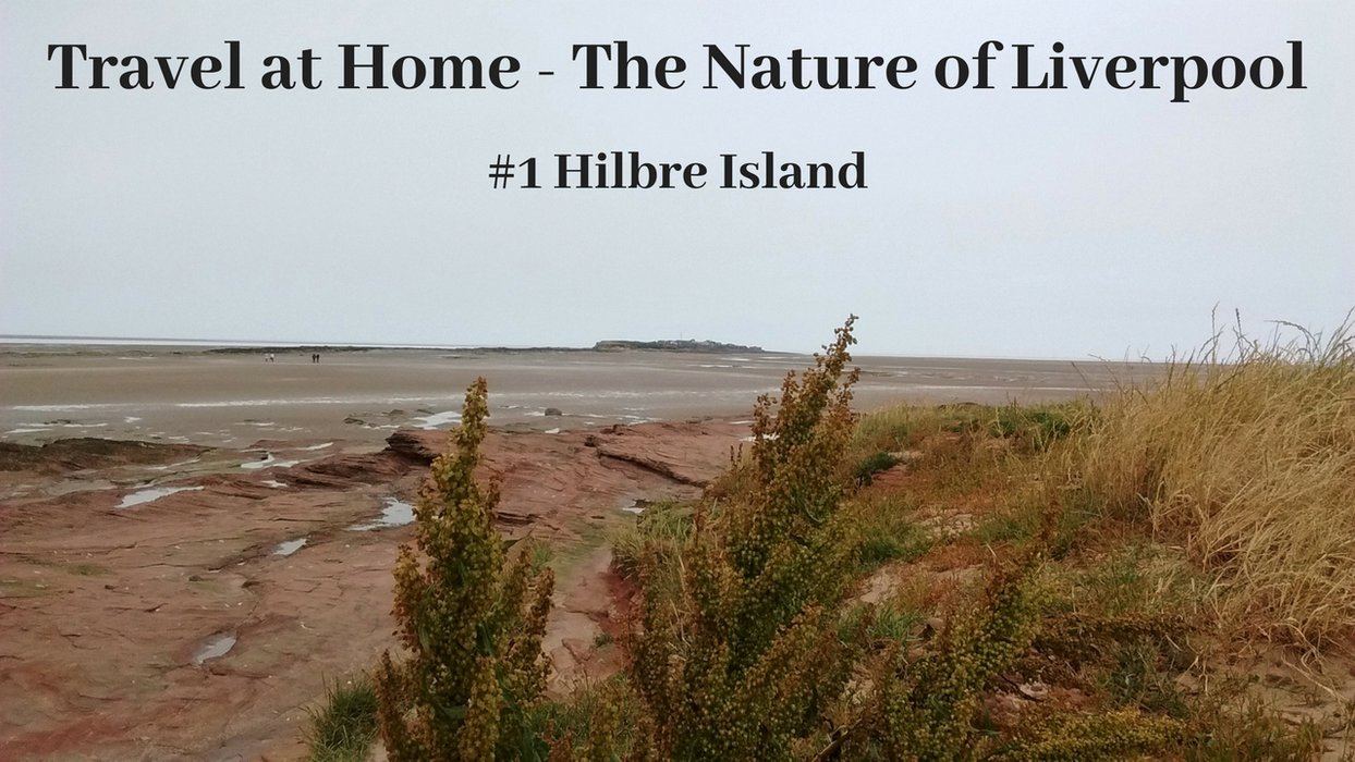 Travel at Home - The Nature of Liverpool.jpg