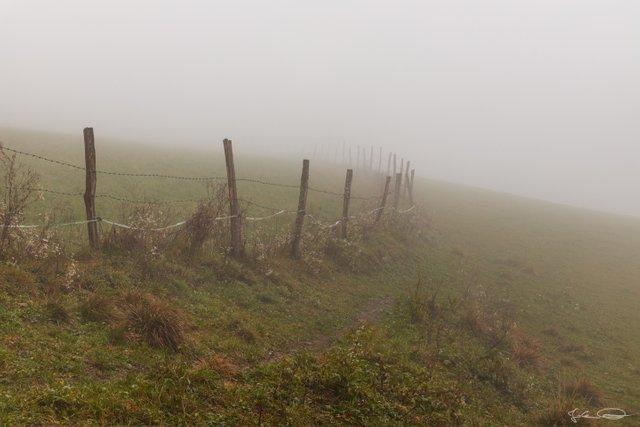 AlphabetHunt F - Fence in Foggy Field