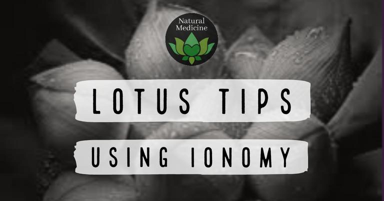 Lotus tips using ionomy.png