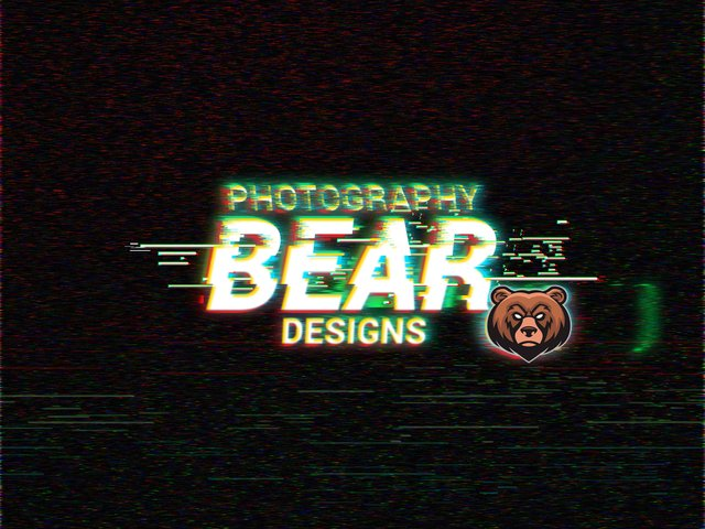 BearDesigns Flyer glicht effect.jpg