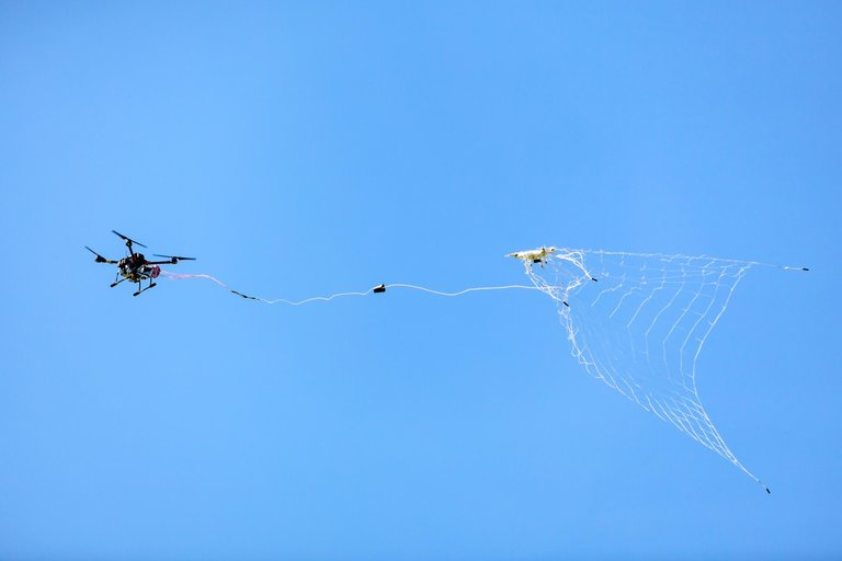 drone catching ddrones.jpg