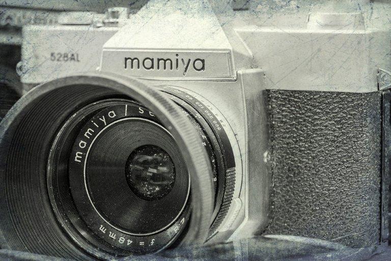 mamiya_filter_11_.jpg