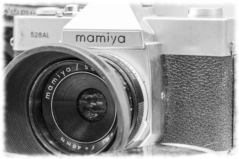 mamiya_filter_18_.jpg