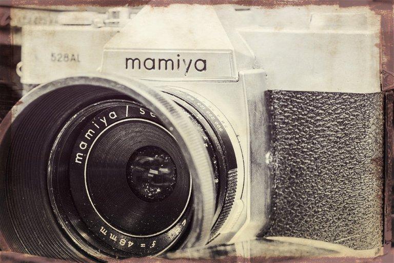 mamiya_filter_21_.jpg