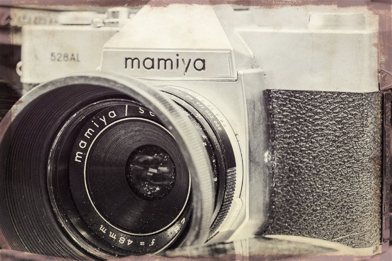mamiya_filter_14_.jpg