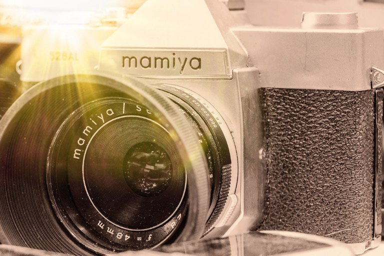 mamiya_filter_27_.jpg