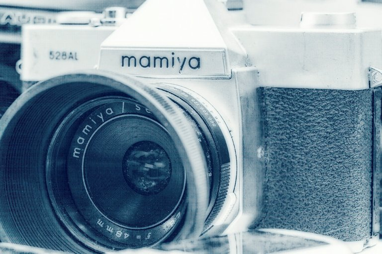 mamiya_filter_12_.jpg