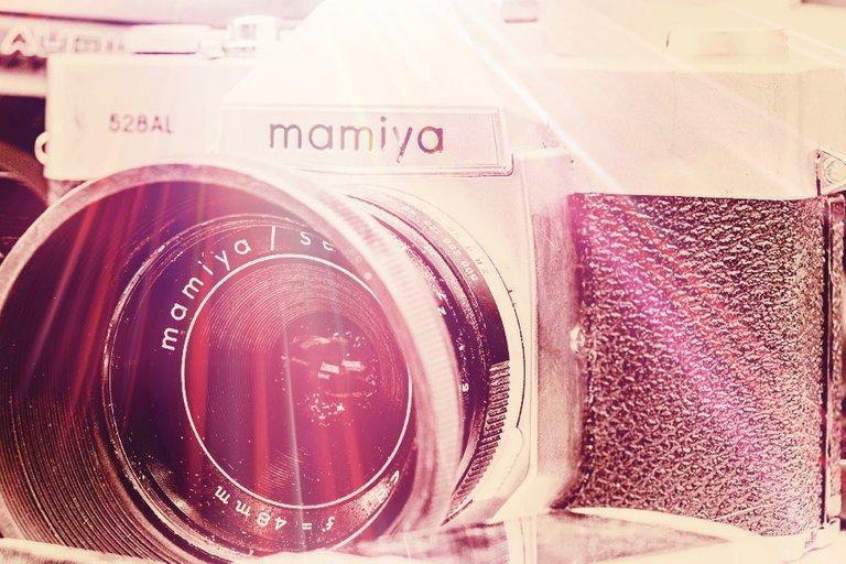mamiya_filter_26_.jpg