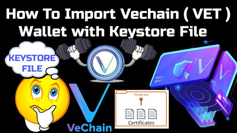 How To Import Vechain ( VET ) Wallet with Keystore File By Crypto Wallets Info.jpg